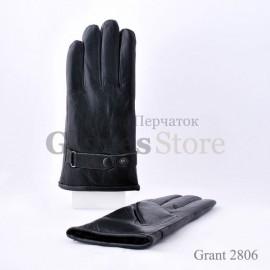 Grant 2806