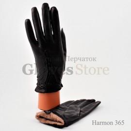 Harmon moda 365