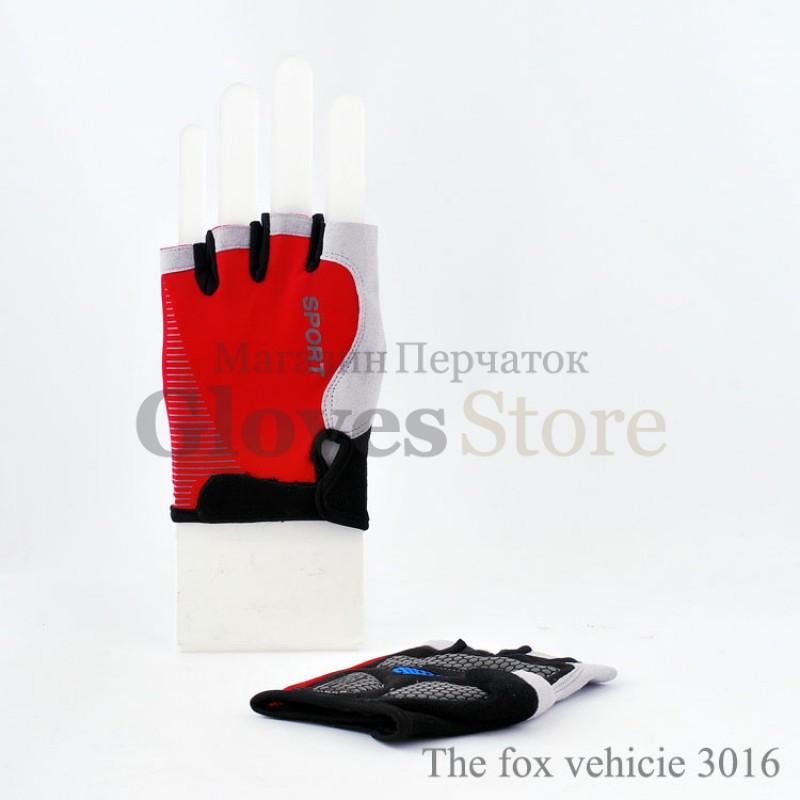 Vehicie 3016